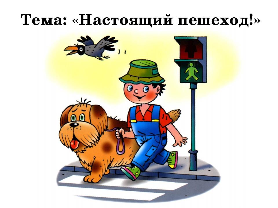 Тема: «Настоящий пешеход!»