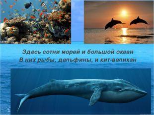 Здесь сотни морей и большой океан В них рыбы, дельфины, и кит-великан
