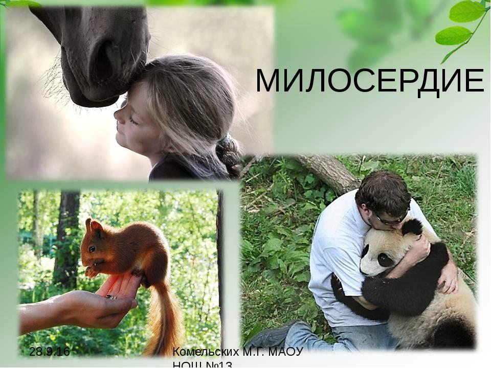 МИЛОСЕРДИЕ Комельских М.Г. МАОУ НОШ №13 Белка - http://nature.baikal.ru/phs/n...
