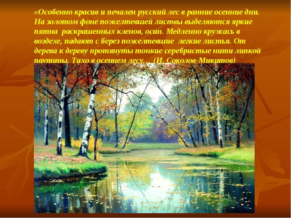 «Особенно красив и печален русский лес в ранние осенние дни. На золотом фоне...