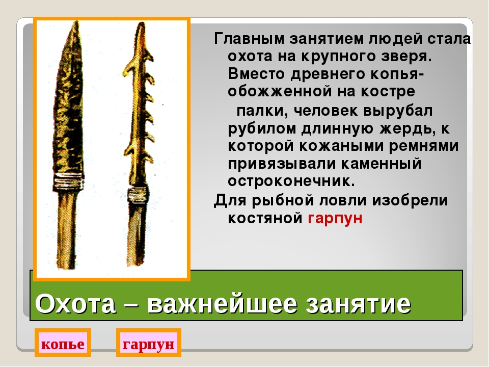 Охота – важнейшее занятие Главным занятием людей стала охота на крупного звер...