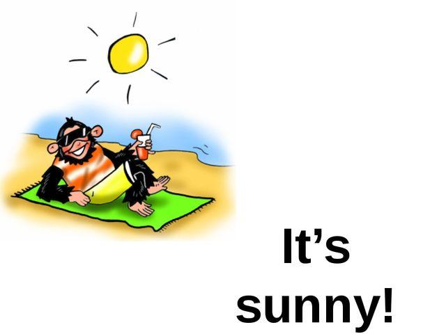 It's sunny!