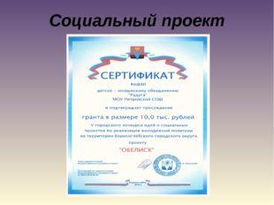 Социальный проект «ОБЕЛИСК»