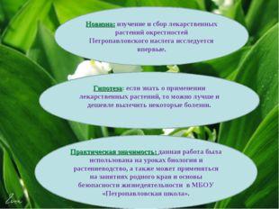 Новизна: изучение и сбор лекарственных растений окрестностей Петропавловског