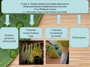 Глава 2. Лекарственные растения окрестности Петропавловского национального н