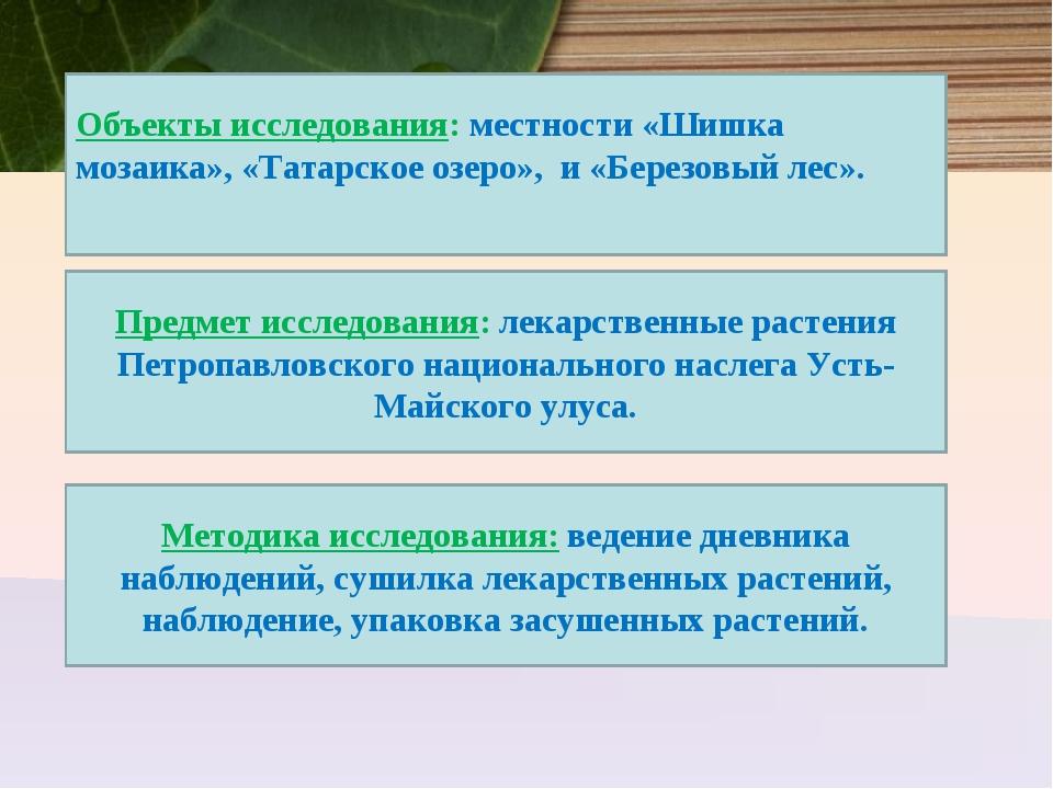 Объекты исследования: местности «Шишка мозаика», «Татарское озеро», и «Берез...