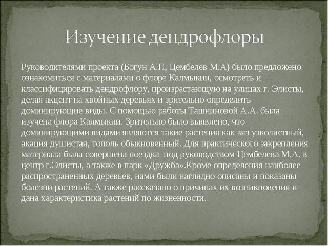 Руководителями проекта (Богун А.П, Цембелев М.А) было предложено ознакомиться...