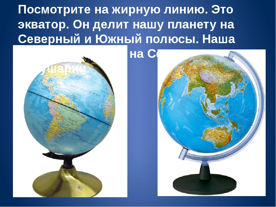 Посмотрите на жирную линию. Это экватор. Он делит нашу планету на Северный и...