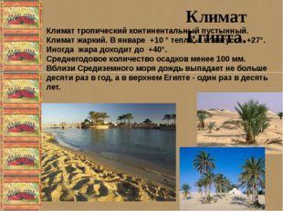 Климат Египта. Климат тропический континентальный пустынный. Климат жаркий.