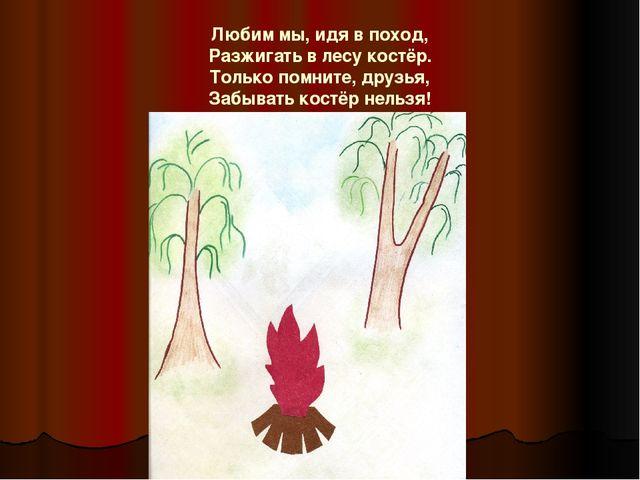Любим мы, идя в поход, Разжигать в лесу костёр. Только помните, друзья, Забыв...