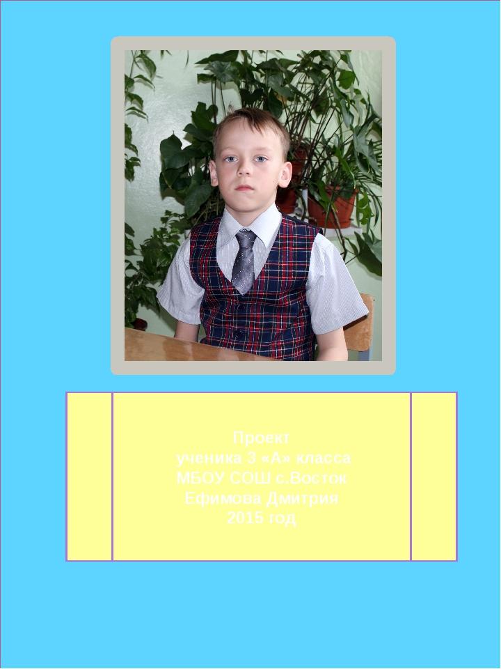 Проект ученика 3 «А» класса МБОУ СОШ с.Восток Ефимова Дмитрия 2015 год