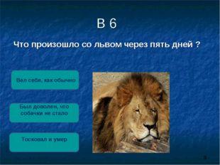 В 6 Что произошло со львом через пять дней ? Тосковал и умер Был доволен, что