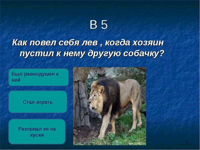В 5 Как повел себя лев , когда хозяин пустил к нему другую собачку? Разорвал...