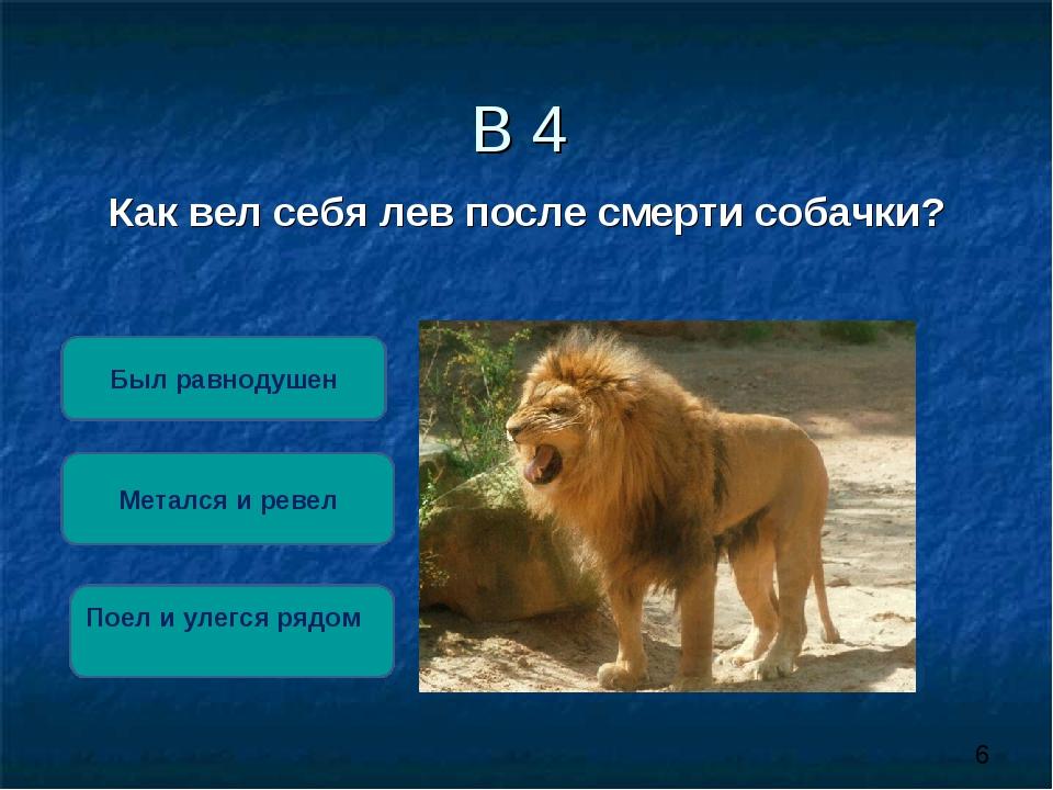 В 4 Как вел себя лев после смерти собачки? Метался и ревел Был равнодушен Пое...
