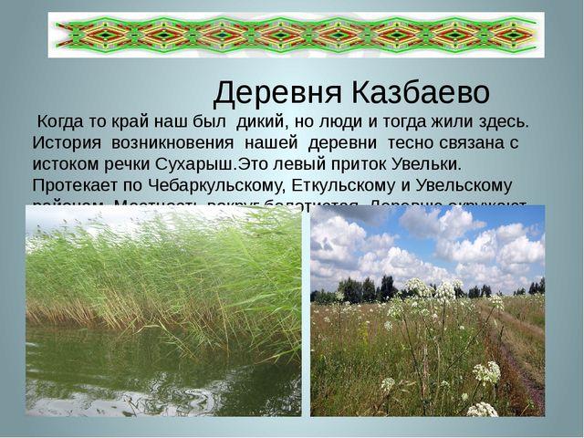 Деревня Казбаево Когда то край наш был дикий, но люди и тогда жили здесь. Ис...