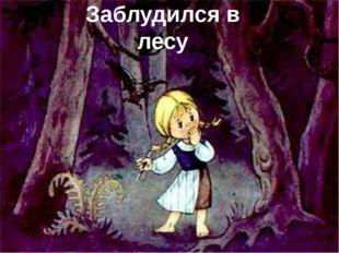 Заблудился в лесу