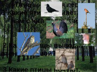 «Птиц ы- друзья леса» 1 Какие птицы прилетают к нам с юга первыми? 2 Какие п
