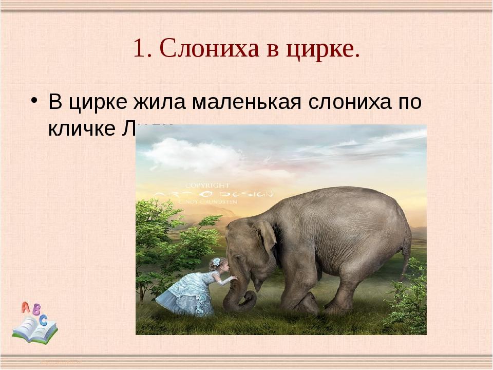 1. Слониха в цирке. В цирке жила маленькая слониха по кличке Лили.