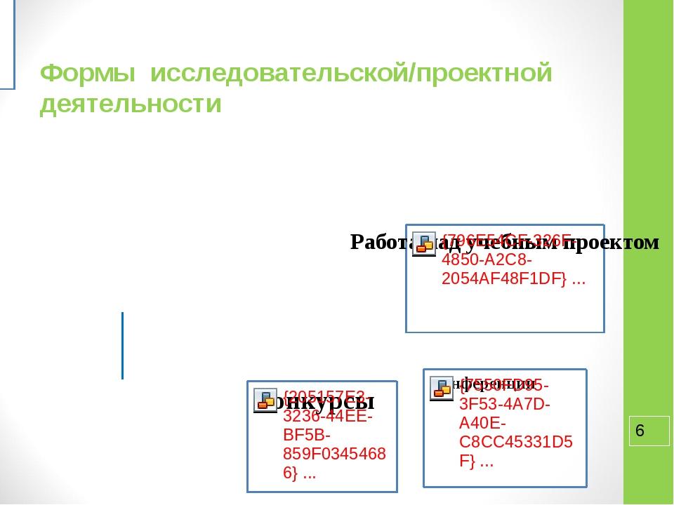 Формы исследовательской/проектной деятельности