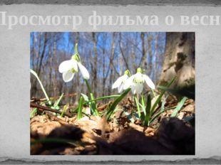 Просмотр фильма о весне