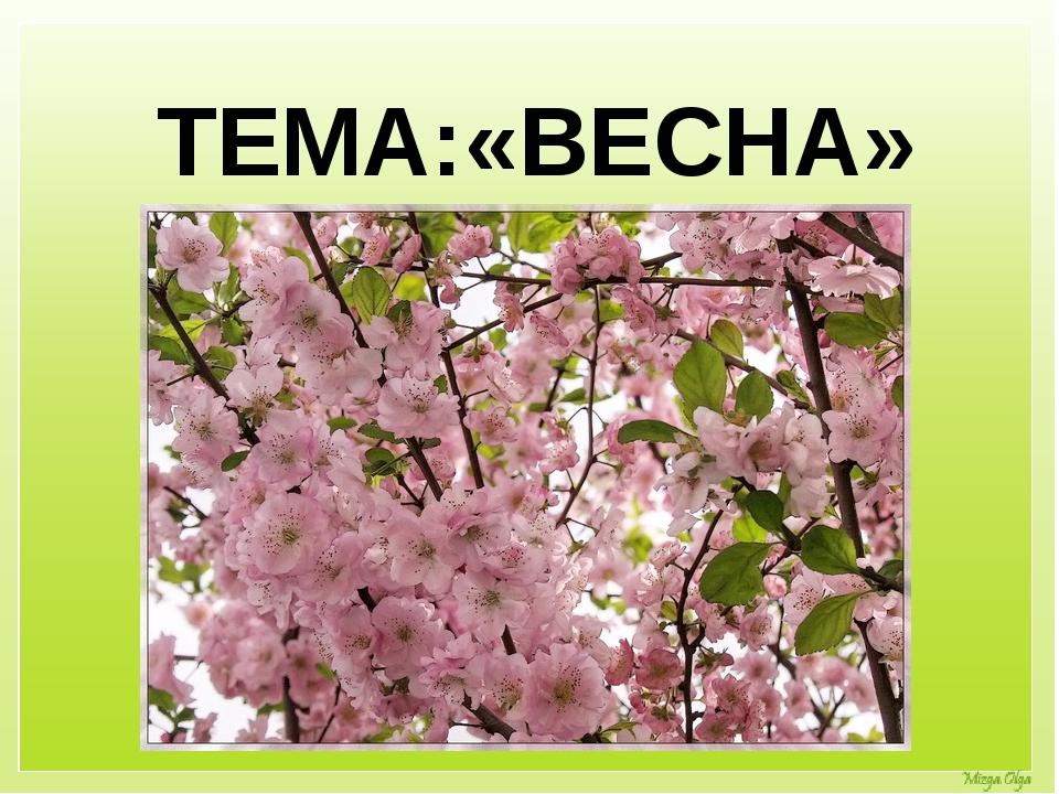 ТЕМА:«ВЕСНА»
