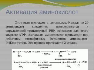 Инициация полипептидной цепи Имеются экспериментальные доказательства, что
