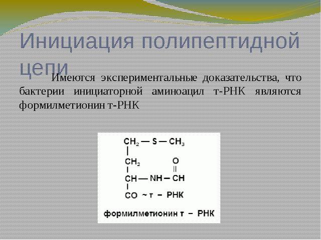 Инициация полипептидной цепи В результате образовалась 70S рибосома готовая...
