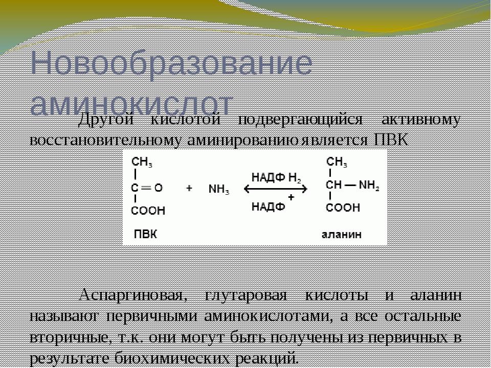 Строение рибосом Рибосомы эукариот и прокариот отличаются друг от друга. Лю...