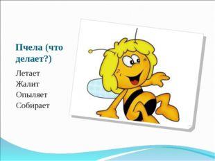 Пчела (что делает?) Летает Жалит Опыляет Собирает