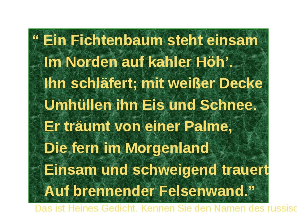 """"""" Ein Fichtenbaum steht einsam Im Norden auf kahler Höh'. Ihn schläfert; mit..."""
