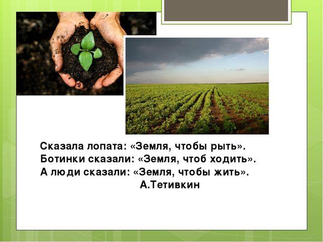 Сказала лопата: «Земля, чтобы рыть». Ботинки сказали: «Земля, чтоб ходить». А...