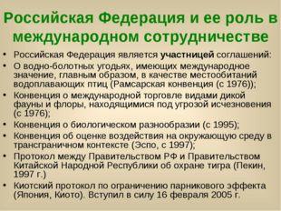 Российская Федерация и ее роль в международном сотрудничестве Российская Феде