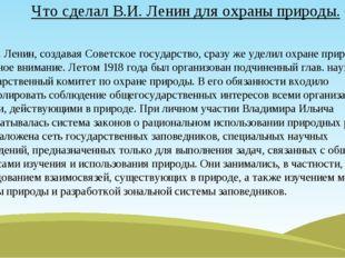 Что сделал В.И. Ленин для охраны природы. В.И. Ленин, создавая Советское госу