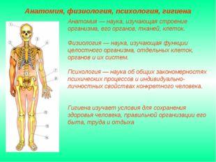 Анатомия — наука, изучающая строение организма, его органов, тканей, клеток.