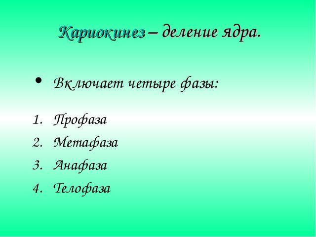 Кариокинез – деление ядра. Включает четыре фазы: Профаза Метафаза Анафаза Тел...