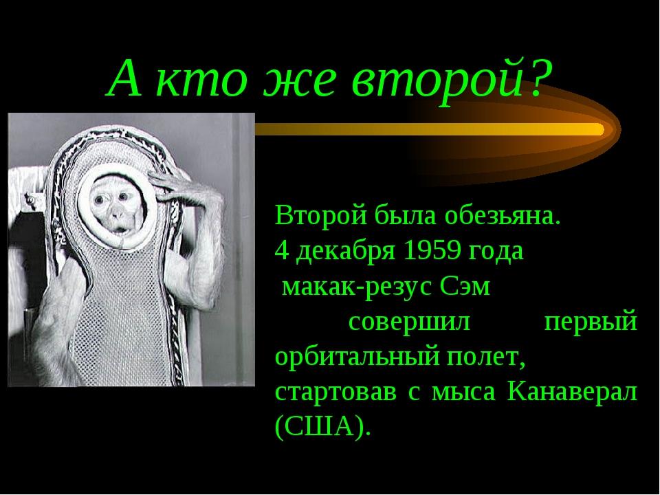 А кто же второй? Второй была обезьяна. 4 декабря 1959 года макак-резус Сэм со...