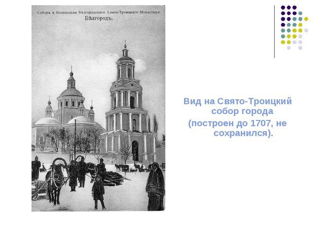 Вид на Свято-Троицкий собор города (построен до 1707, не сохранился).