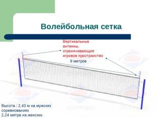Волейбольная сетка Вертикальные антенны, ограничивающие игровое пространство