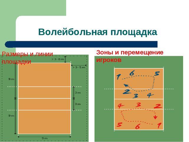 Волейбольная площадка Размеры и линии площадки Зоны и перемещение игроков