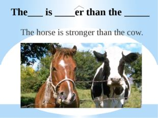 The___ is ____er than the _____ The horse is stronger than the cow.