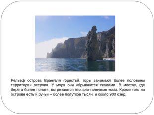 Рельеф острова Врангеля гористый, горы занимают более половины территории ос