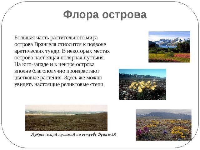 Флора острова Большая часть растительного мира острова Врангеля относится к п...