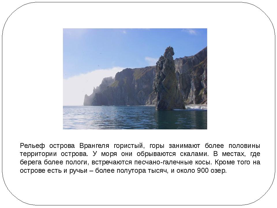 Рельеф острова Врангеля гористый, горы занимают более половины территории ос...