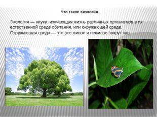 Что такое экология Экология — наука, изучающая жизнь различных организмов в и