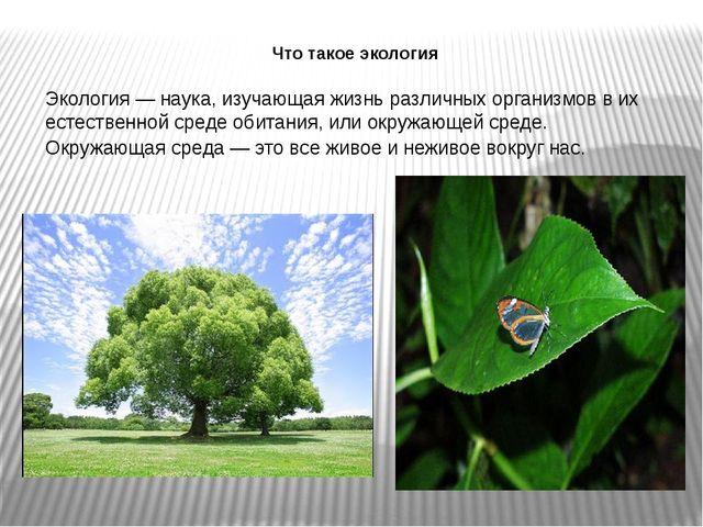 Что такое экология Экология — наука, изучающая жизнь различных организмов в и...