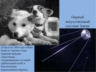 Первый искусственный спутник Земли 19 августа 1960 года собаки Белка и Стрелк