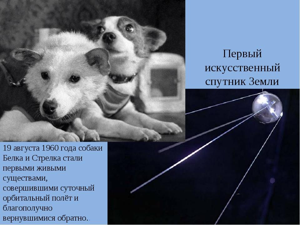 Первый искусственный спутник Земли 19 августа 1960 года собаки Белка и Стрелк...