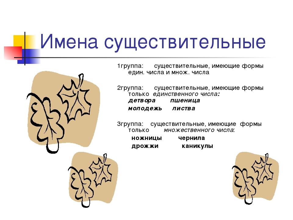 Имена существительные 1группа: существительные, имеющие формы един. числа и м...