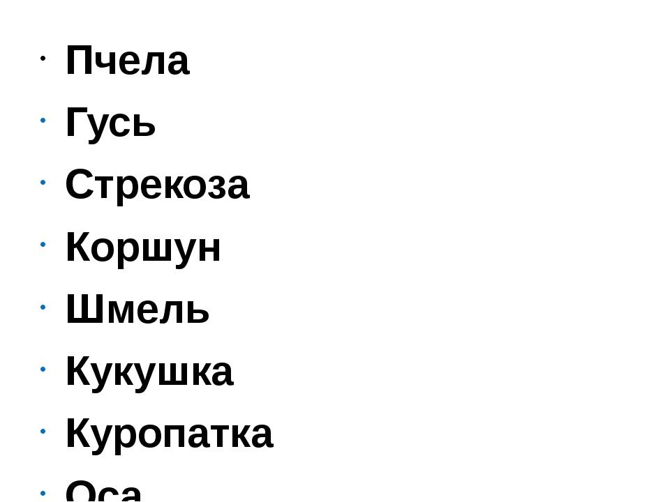 Пчела Гусь Стрекоза Коршун Шмель Кукушка Куропатка Оса