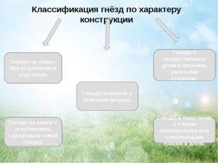 Классификация гнёзд по характеру конструкции Гнездо на земле, без углубления